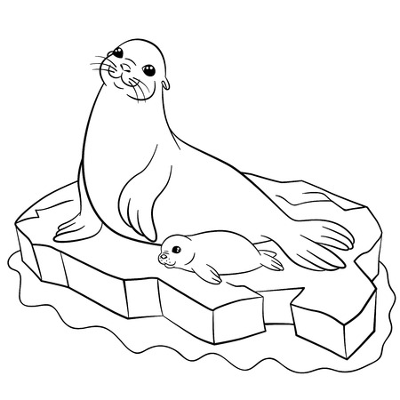 floe: Coloring pages. Mother seal with her little cute baby on the ice floe. Illustration