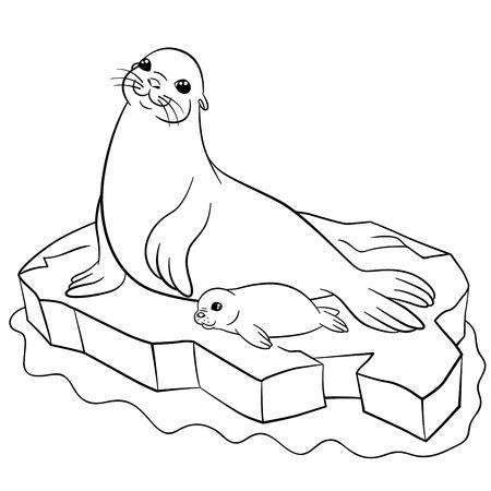 Malvorlagen Zwei Kleine Niedliche Robben Schwimmen Und Lächeln