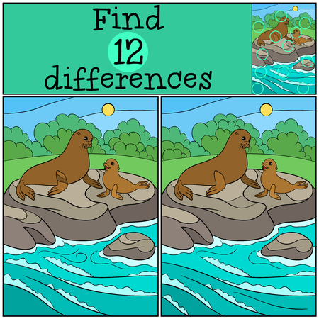 Educational game: Find differences. Mother fur seal sits on the stone near the ocean with her little cute baby seal. Illustration