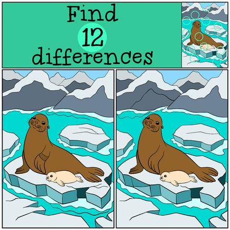 Educatief spel: Zoek de verschillen. fur moeder zegel legt op de ijsschots met haar kleine schattige witte coating van zeehondenbaby en glimlacht. Stockfoto - 62894363