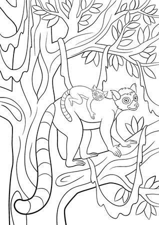 Páginas Para Colorear. Madre Lémur Se Encuentra En La Rama De Un ...