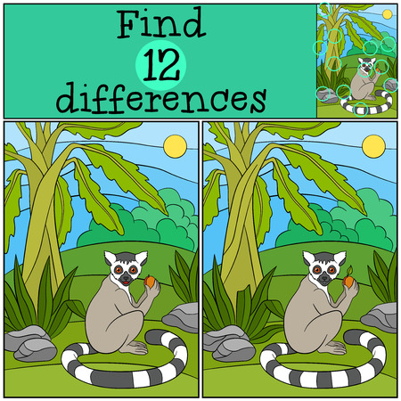 spot the difference: Educational game: Find differences. Little cute lemur holds a fruit in the hands and smiles. Illustration