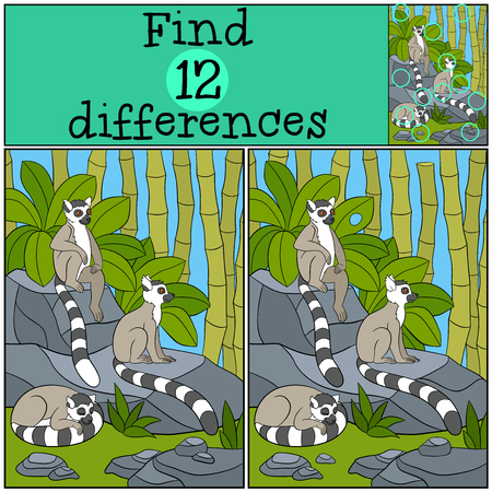 spot the difference: Educational game: Find differences. Three little cute lemurs on the stones.