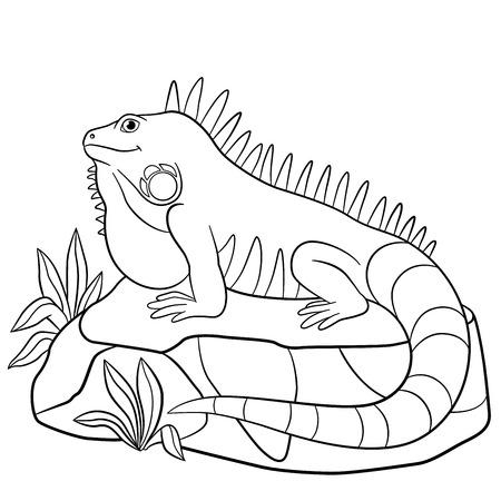 Páginas Para Colorear. Iguana Linda Se Sienta En La Roca Y Sonrisas ...