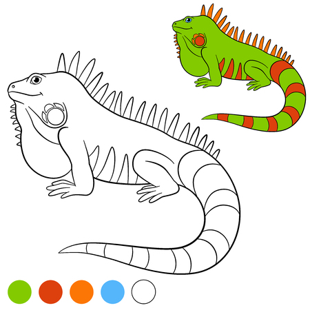 Color me: iguana. Cute green iguana sits and smiles. Illustration
