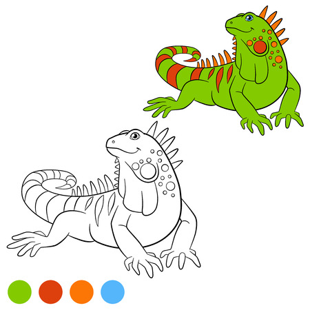 Color me: iguana. Cute green iguana sits and smiles.