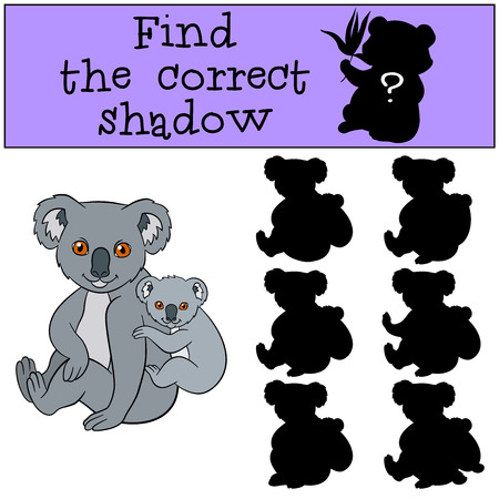 shape cub: Educational game: Find the correct shadow. Mother koala sits with her little cute baby and smiles. Illustration