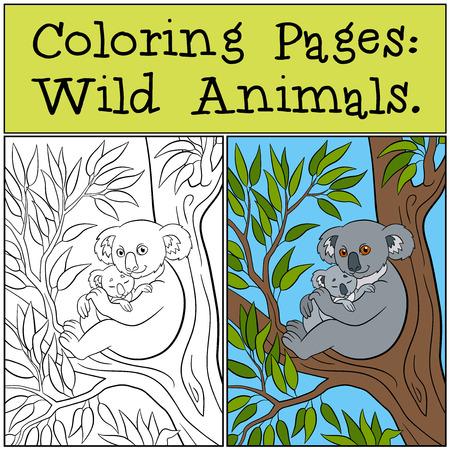 Kleine Kleurplaten Van Dieren.Kleurplaten Wilde Dieren Moeder Koala Zit Op De Boomtak