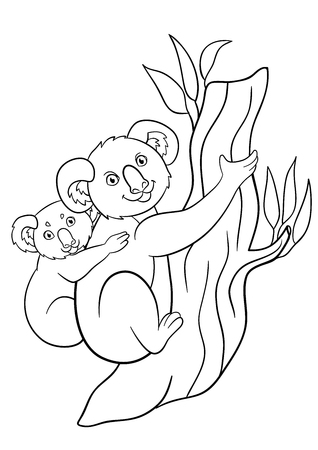 Coloring Pages. Mother Koala With Her Little Cute Baby On Her ...