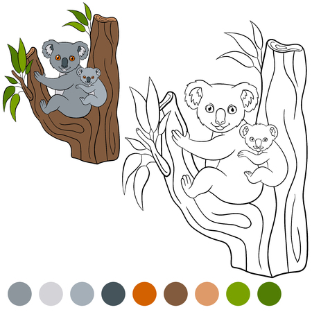 colorless: Color me: koala. Mother koala sits with her little cute baby on the tree branch and smiles. Illustration