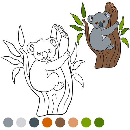 tree branch: Color me: koala. Little cute baby koala sits on the tree branch and smiles.