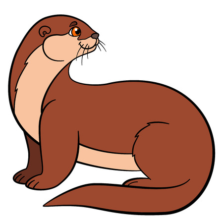 sea otter: Cartoon animals. Little cute otter sits and smiles.