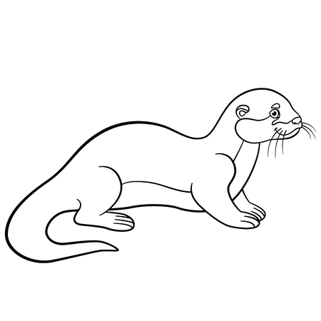 nutria caricatura: Coloring pages. Little cute otter stands and smiles. Vectores
