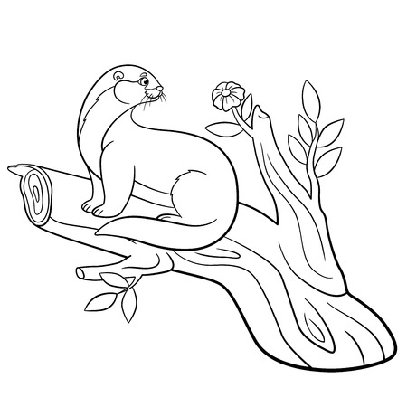 nutria caricatura: Coloring pages. Little cute otter sits on the tree branch and looks at the flower.