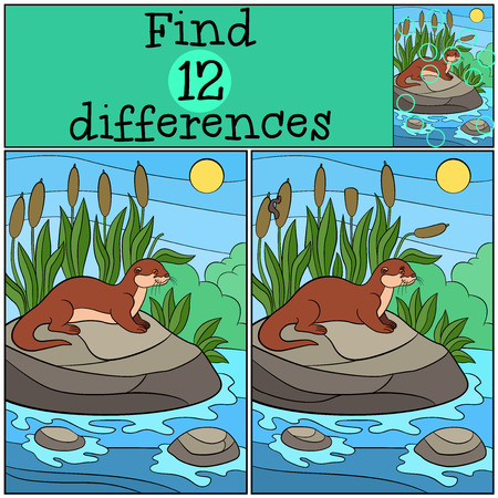 Educational game: Find differences. Little cute otter stands on the stone in the river and smiles.
