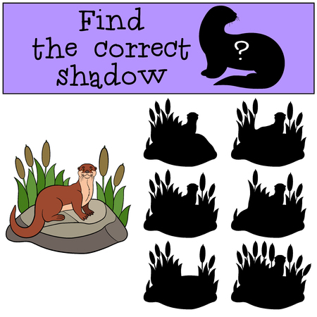 nutria caricatura: Educational game: Find the correct shadow. Little cute otter stands on the stone and smiles.
