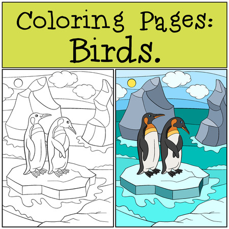 Coloring Pages: Birds. Mother Penguin Stands On The Stone With ...