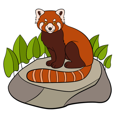 Cartoon wild animals. Little cute red panda sits on the stone and smiles. Illustration