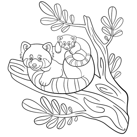 Coloring pages. Mother red panda sits on the tree branch with her little cute baby and smiles. Vector Illustration