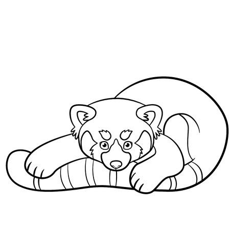 Páginas Para Colorear. El Pequeño Panda Rojo Lindo Se Sienta Y ...