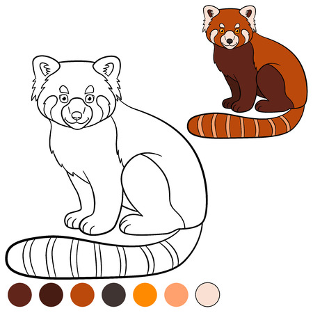 Dibujo Para Colorear: Panda Rojo. Los Pequeños Paseos Lindo Panda ...