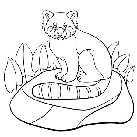 Coloriage. Petit panda rouge mignon assis sur la pierre et sourit. Vecteurs