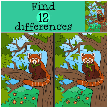 Educational game: Find differences. Little cute red panda sits on the tree branch in the forest and eats leaves.