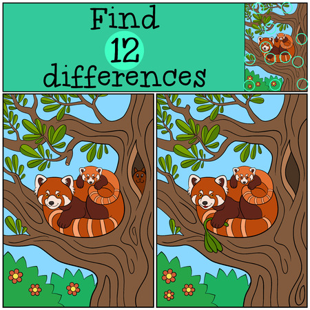 Educational game: Find differences. Mother red panda with her little cute baby on the tree branch.