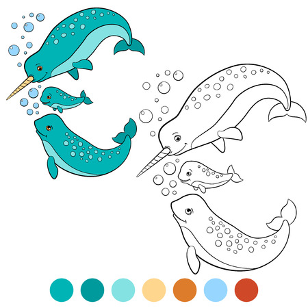 colorless: Coloring pages: narwhal. Mother, father and baby narwhals swim and smile.