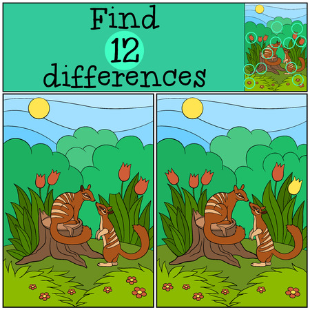 difficulties: Educational game: Find differences. Two little cute numbats look at each other and smile. Illustration