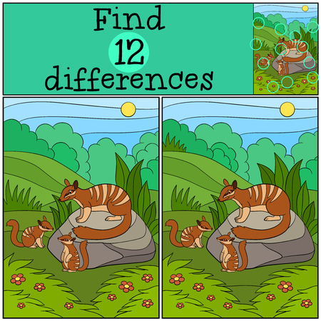 Educational game: Find differences. Mother numbat with her little cute babies.