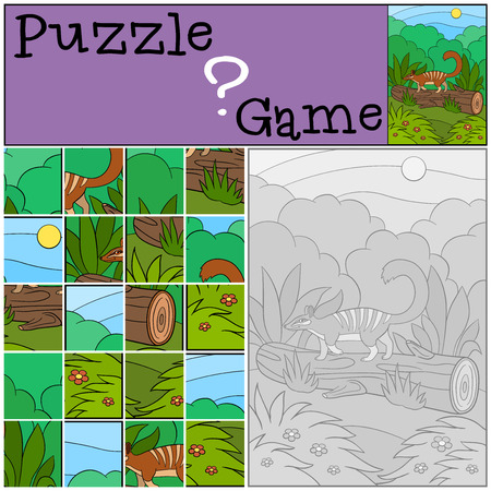 Education game: Puzzle. Little cute numbat walks on the log and smiles.