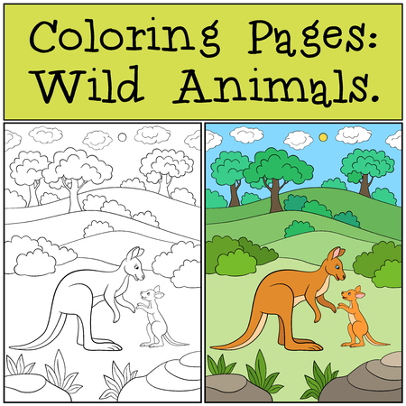 Coloring Pages: Wild Animals. Mother kangaroo with her baby.