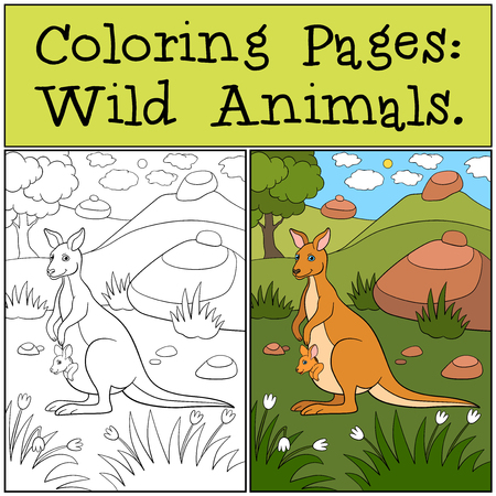 Coloring Pages: Wild Animals. Mother kangaroo with her baby. Stockfoto - 106903403
