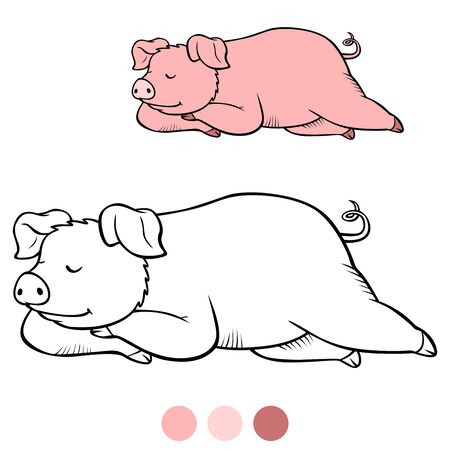 Color me: Cute pig sleeps and smiles. Illustration