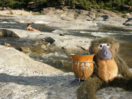 River landscape with teddy having mate, Mina Clavero, Cordoba Stock Photo