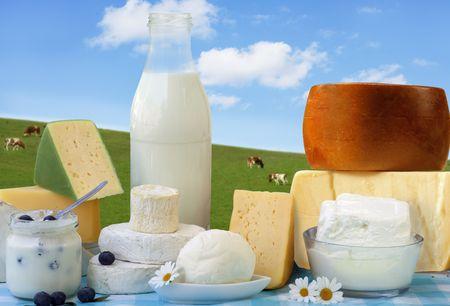 Milchprodukte in Glasbehälter und Käse
