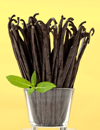 glas: Glas with  Bunch of fresh vanilla beans.  isolated on white