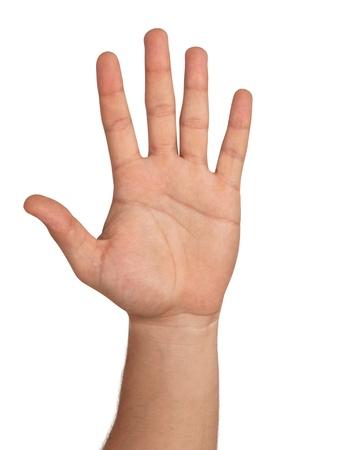 manos abiertas: Mano abierta Aislado En Blanco Foto de archivo