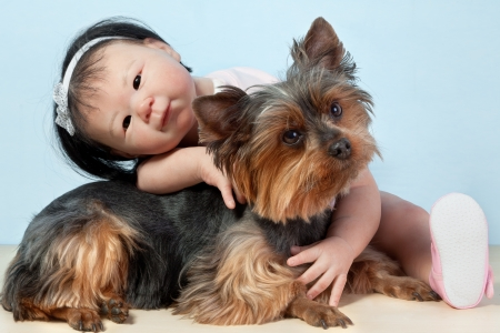 Asian Baby Doll Embracing her pet dog yorkshire sitting down in front on a white background  photo