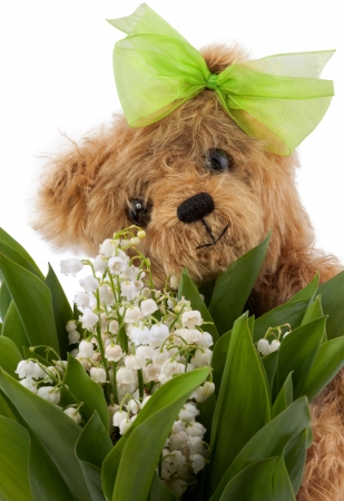 lily of the valley from Teddy on Mother Stock Photo - 14349964