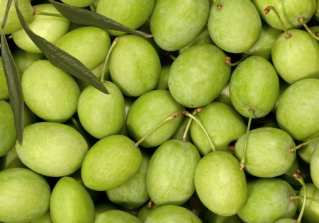 Collection of green Olives full frame Stock Photo - 14388497
