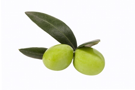 Olives on Branch isolated on white background photo