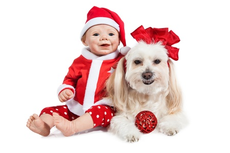Santa baby Doll and Maltese Puppy ready for Christmas on white Background photo