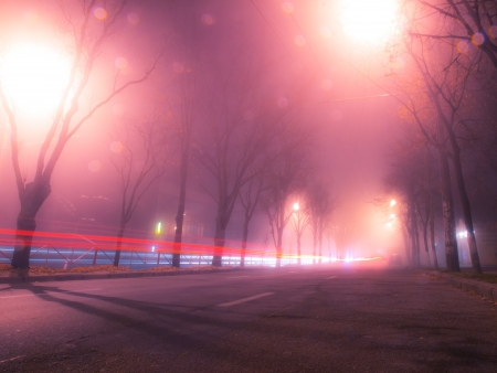 Night and foggy street in autumn Kiev photo