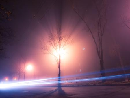 Night and foggy street in autumn Kiev photo
