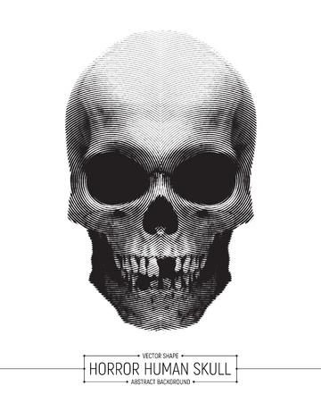 Vector Human Horror Skull Vector Illustration