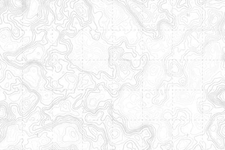 Abstrait Blanc Détaillé Topographique Carte Contour Sur Fond Blanc Subtil