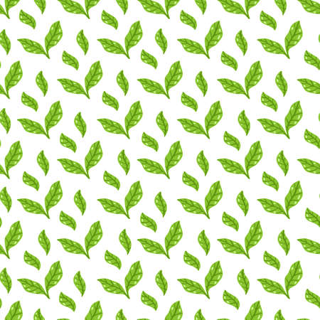 Tea leaves pattern. Seamless floral and herbal pattern. Hand drawn leaf background.