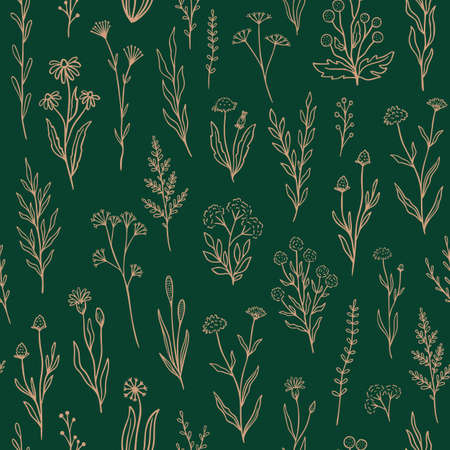 Wildflower seamless pattern with outline floral. Retro style print design with hand drawn doodle flowers in rustic colors.